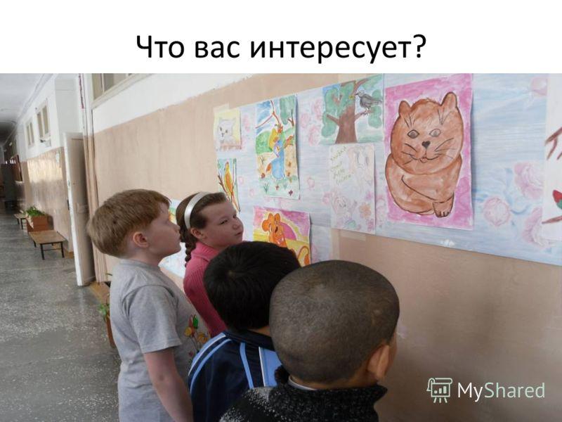 Что вас интересует?