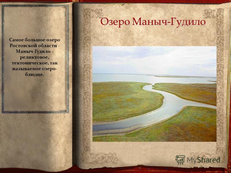 Озеро Маныч-Гудило Самое большое озеро Ростовской области - Маныч-Гудило - реликтовое, тектоническое, так называемое озеро- блюдце.