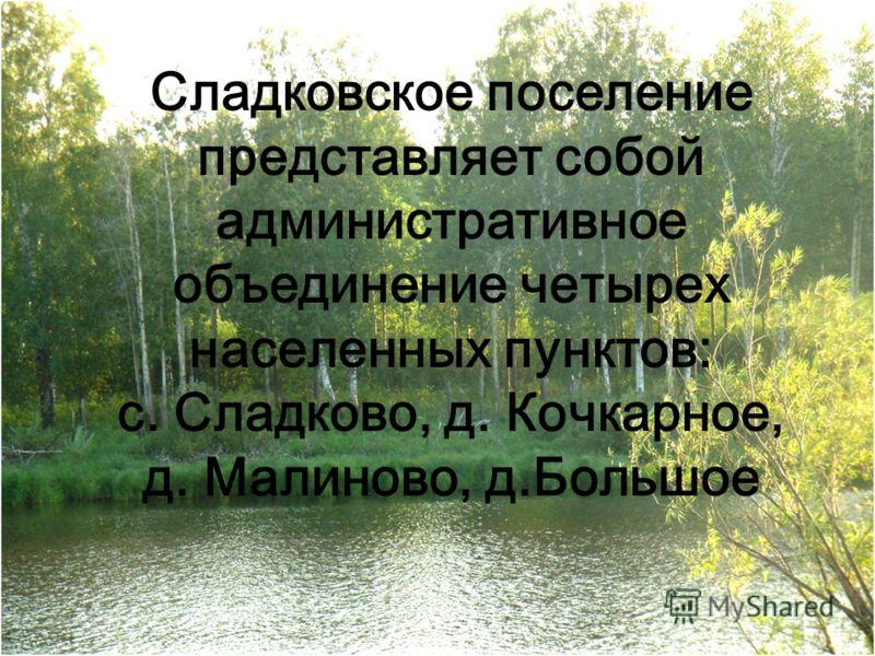 Сладковское поселение представляет собой административное объединение четырех населенных пунктов: с. Сладково, д. Кочкарное, д. Малиново, д.Большое