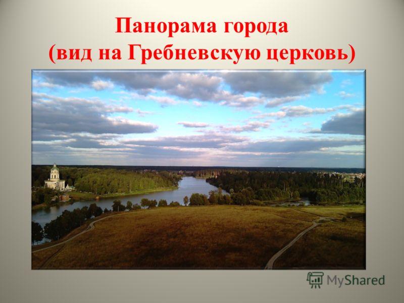Панорама города (вид на Гребневскую церковь)