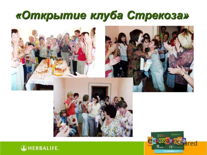 «Открытие клуба Стрекоза»