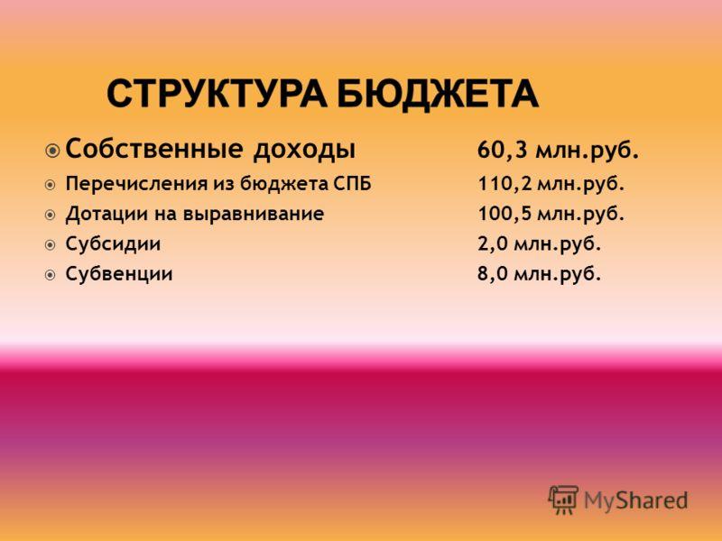 Собственные доходы 60,3 млн.руб. Перечисления из бюджета СПБ 110,2 млн.руб. Дотации на выравнивание 100,5 млн.руб. Субсидии 2,0 млн.руб. Субвенции8,0 млн.руб.