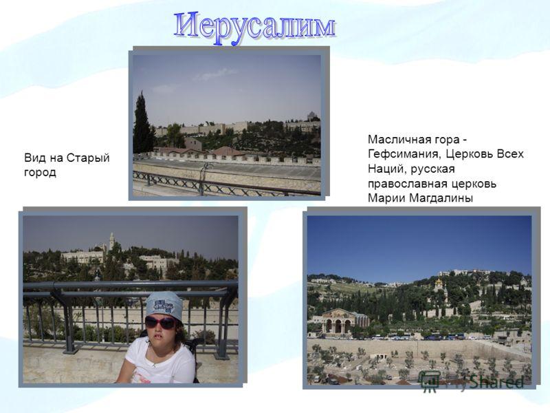 Вид на Старый город Масличная гора - Гефсимания, Церковь Всех Наций, русская православная церковь Марии Магдалины