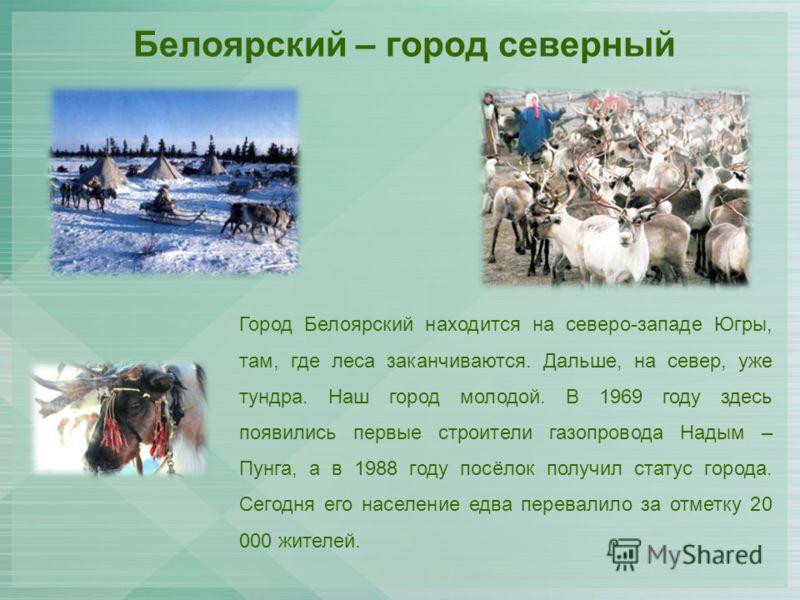 Белоярский – город северный Город Белоярский находится на северо-западе Югры, там, где леса заканчиваются. Дальше, на север, уже тундра. Наш город молодой. В 1969 году здесь появились первые строители газопровода Надым – Пунга, а в 1988 году посёлок