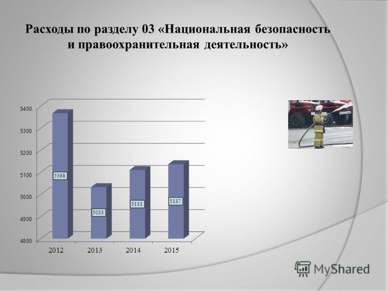Расходы по разделу 03 «Национальная безопасность и правоохранительная деятельность»
