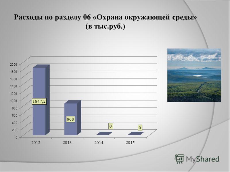 Расходы по разделу 06 «Охрана окружающей среды» (в тыс.руб.)