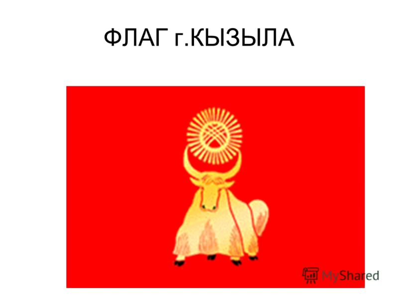 ФЛАГ г.КЫЗЫЛА
