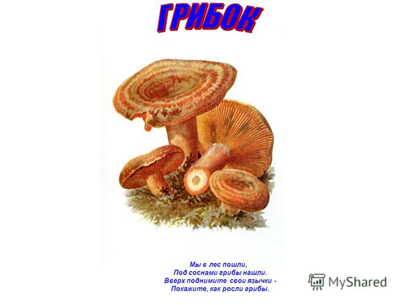 Мы в лес пошли, Под соснами грибы нашли. Вверх поднимите свои язычки - Покажите, как росли грибы.