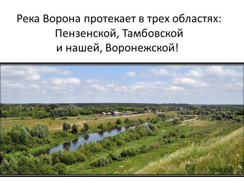 Река Ворона протекает в трех областях: Пензенской, Тамбовской и нашей, Воронежской!