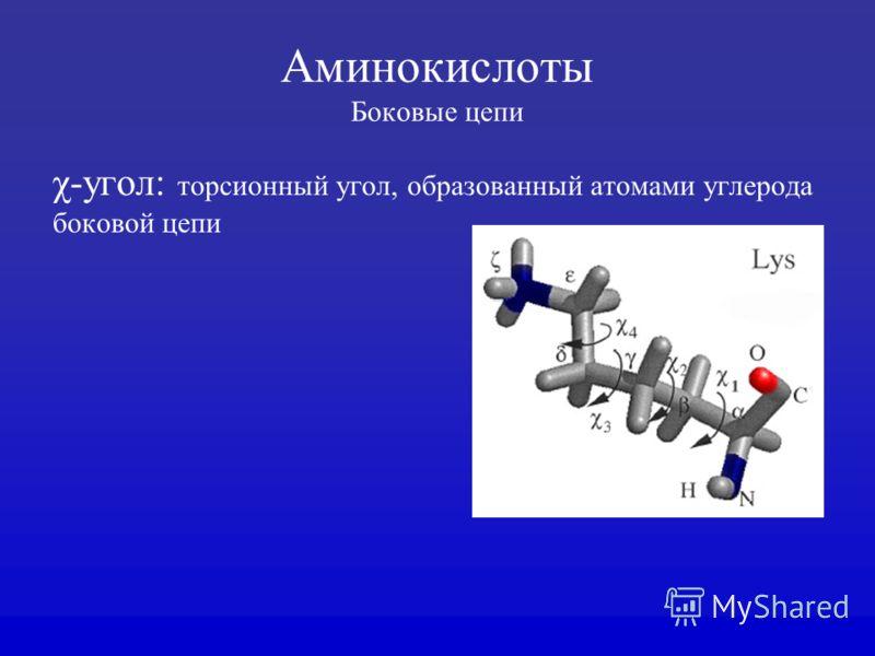 Аминокислоты Боковые цепи χ-угол: торсионный угол, образованный атомами углерода боковой цепи