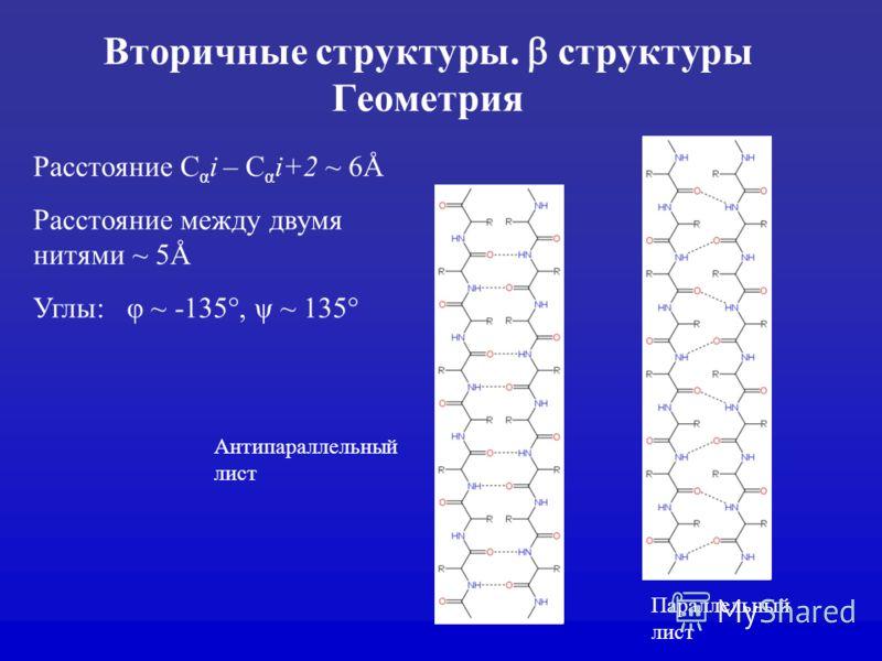 Вторичные структуры. структуры Геометрия Расстояние С α i – С α i+2 ~ 6Å Расстояние между двумя нитями ~ 5Å Углы: φ ~ -135°, ψ ~ 135° Антипараллельный лист Параллельный лист