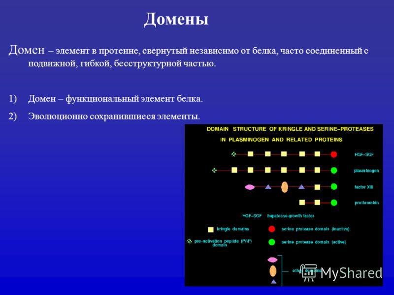 Домены Домен – элемент в протеине, свернутый независимо от белка, часто соединенный с подвижной, гибкой, бесструктурной частью. 1)Домен – функциональный элемент белка. 2)Эволюционно сохранившиеся элементы.