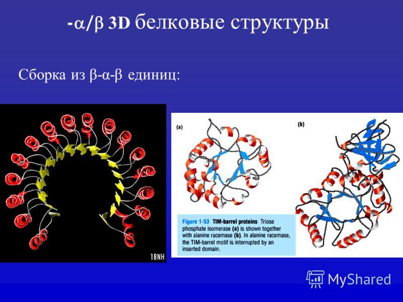 - / 3D белковые структуры Сборка из β-α-β единиц: