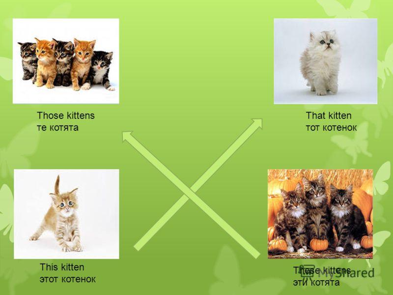 This kitten этот котенок That kitten тот котенок These kittens эти котята Those kittens те котята