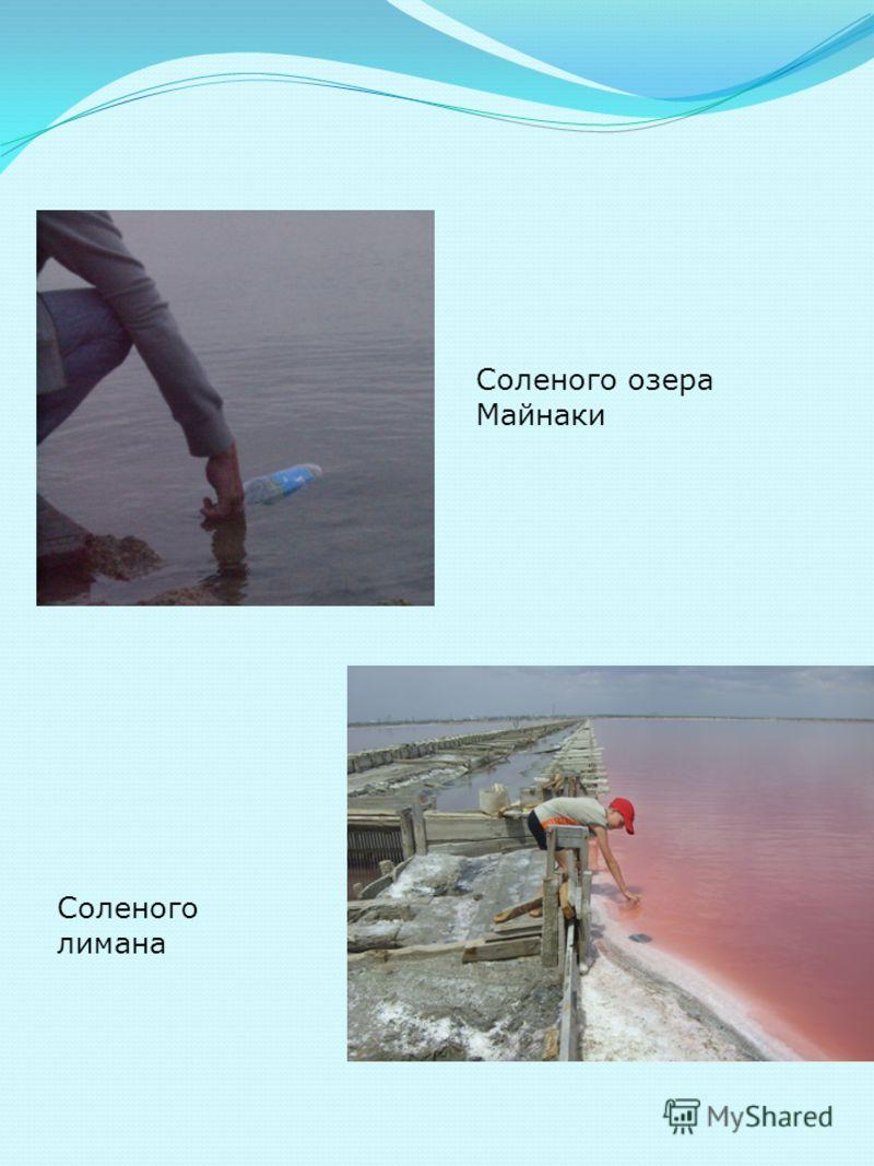 Соленого озера Майнаки Соленого лимана