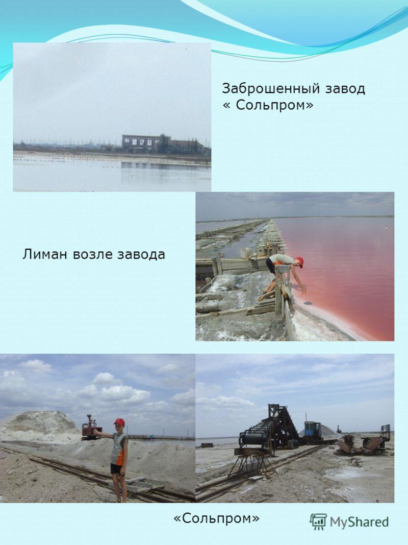 Заброшенный завод « Сольпром» Лиман возле завода «Сольпром»