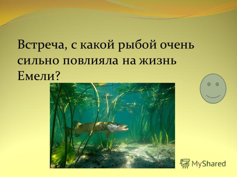 Встреча, с какой рыбой очень сильно повлияла на жизнь Емели?
