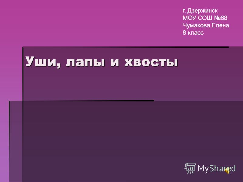 Уши, лапы и хвосты г. Дзержинск МОУ СОШ 68 Чумакова Елена 8 класс