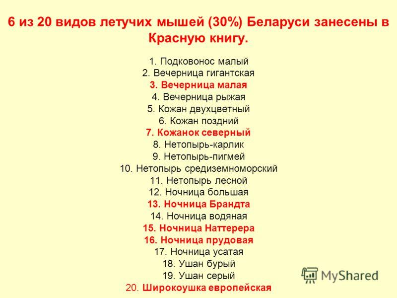 6 из 20 видов летучих мышей (30%) Беларуси занесены в Красную книгу. 1. Подковонос малый 2. Вечерница гигантская 3. Вечерница малая 4. Вечерница рыжая 5. Кожан двухцветный 6. Кожан поздний 7. Кожанок северный 8. Нетопырь-карлик 9. Нетопырь-пигмей 10.
