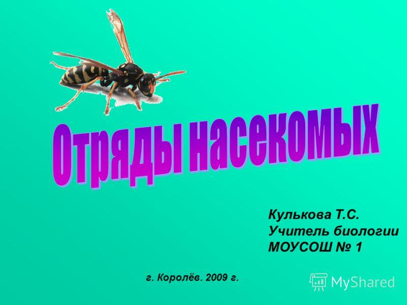 Кулькова Т.С. Учитель биологии МОУСОШ 1 г. Королёв. 2009 г.