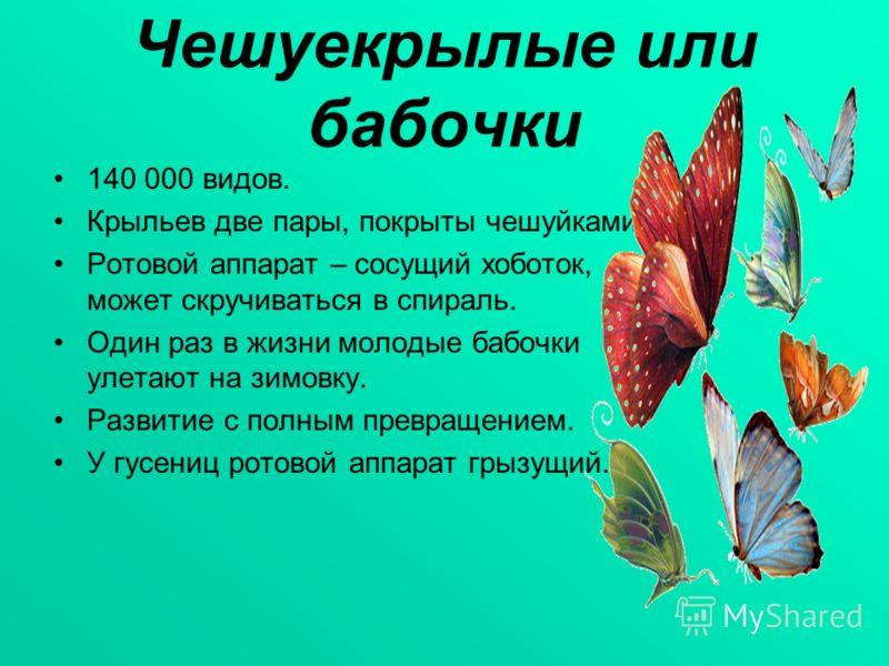 Чешуекрылые или бабочки 140 000 видов. Крыльев две пары, покрыты чешуйками. Ротовой аппарат – сосущий хоботок, может скручиваться в спираль. Один раз в жизни молодые бабочки улетают на зимовку. Развитие с полным превращением. У гусениц ротовой аппара