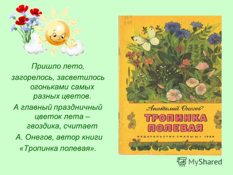 Пришло лето, загорелось, засветилось огоньками самых разных цветов. А главный праздничный цветок лета – гвоздика, считает А. Онегов, автор книги «Тропинка полевая».