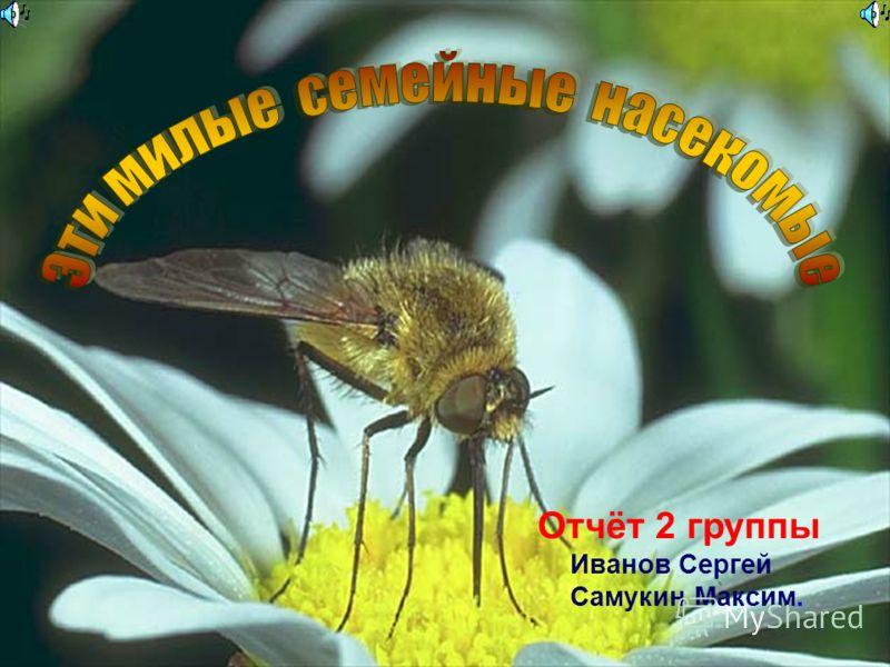Отчёт 2 группы Иванов Сергей Самукин Максим.