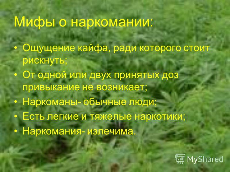 Мифы о наркомании: Ощущение кайфа, ради которого стоит рискнуть; От одной или двух принятых доз привыкание не возникает; Наркоманы- обычные люди; Есть легкие и тяжелые наркотики; Наркомания- излечима.