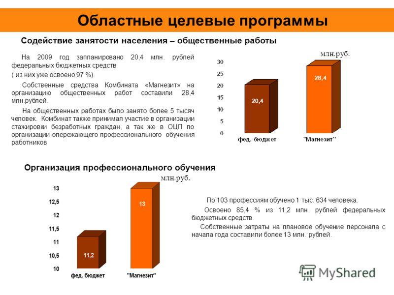 Областные целевые программы На 2009 год запланировано 20,4 млн. рублей федеральных бюджетных средств ( из них уже освоено 97 %). Собственные средства Комбината «Магнезит» на организацию общественных работ составили 28,4 млн.рублей. На общественных ра