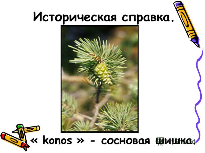 « konos » - сосновая шишка.