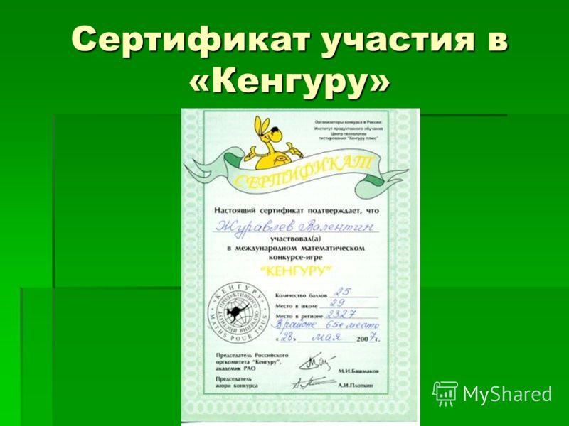 Сертификат участия в «Кенгуру»