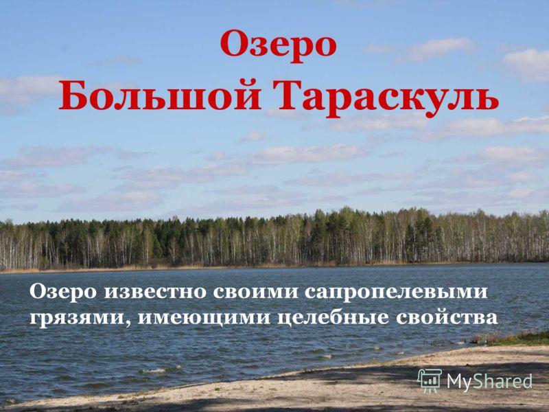 Озеро Большой Тараскуль Озеро известно своими сапропелевыми грязями, имеющими целебные свойства