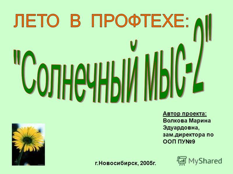 Автор проекта: Волкова Марина Эдуардовна, зам.директора по ООП ПУ9 г.Новосибирск, 2005г.