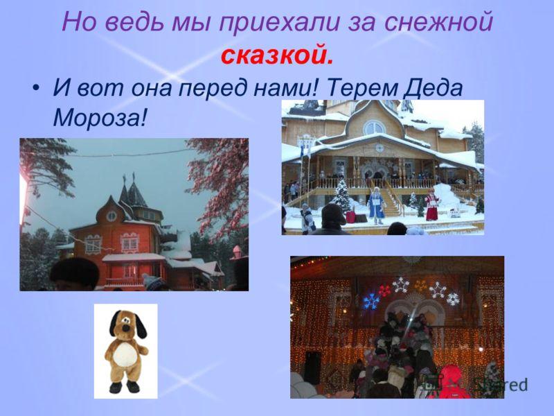 Но ведь мы приехали за снежной сказкой. И вот она перед нами! Терем Деда Мороза!