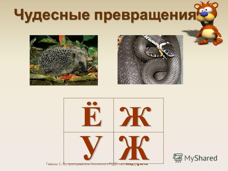 Гаврыш С. В., преподаватель Смолеского РЦДО сайт:http://g-sv.ru Чудесные превращения