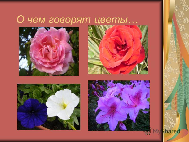 О чем говорят цветы…