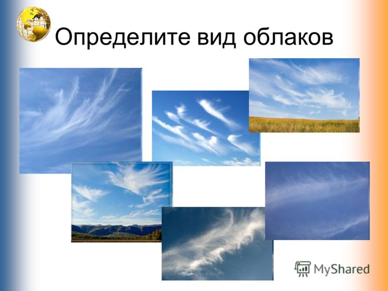 Определите вид облаков