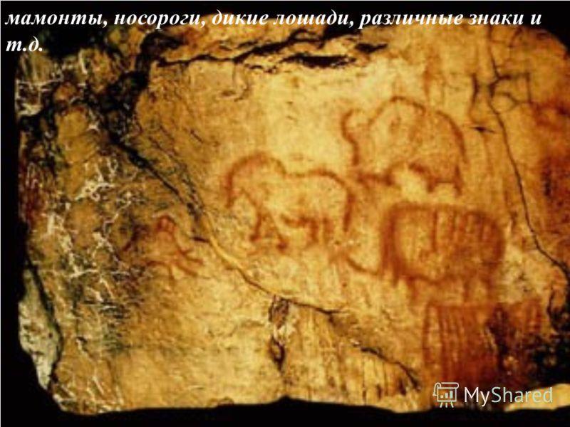 мамонты, носороги, дикие лошади, различные знаки и т.д.