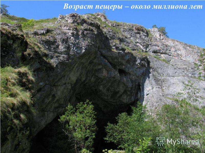 Возраст пещеры – около миллиона лет