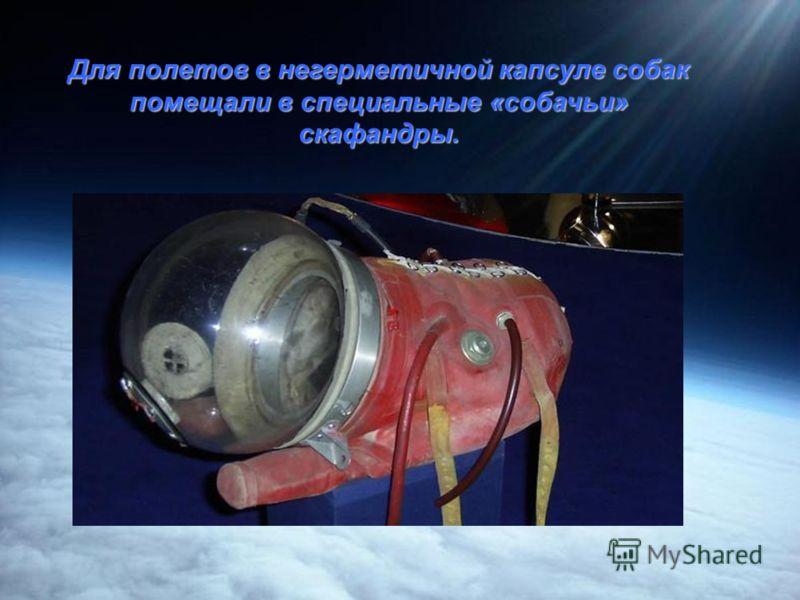 Белка и Стрелка стали первыми биокосмонавтами, благополучно вернувшимися на Землю.