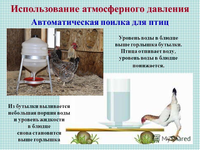 Автоматическая поилка для птиц Уровень воды в блюдце выше горлышка бутылки. Птица отпивает воду, уровень воды в блюдце понижается. Из бутылки выливается небольшая порция воды и уровень жидкости в блюдце снова становится выше горлышка Использование ат