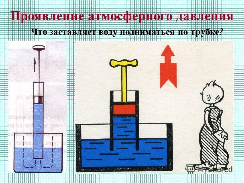 Проявление атмосферного давления Что заставляет воду подниматься по трубке ?