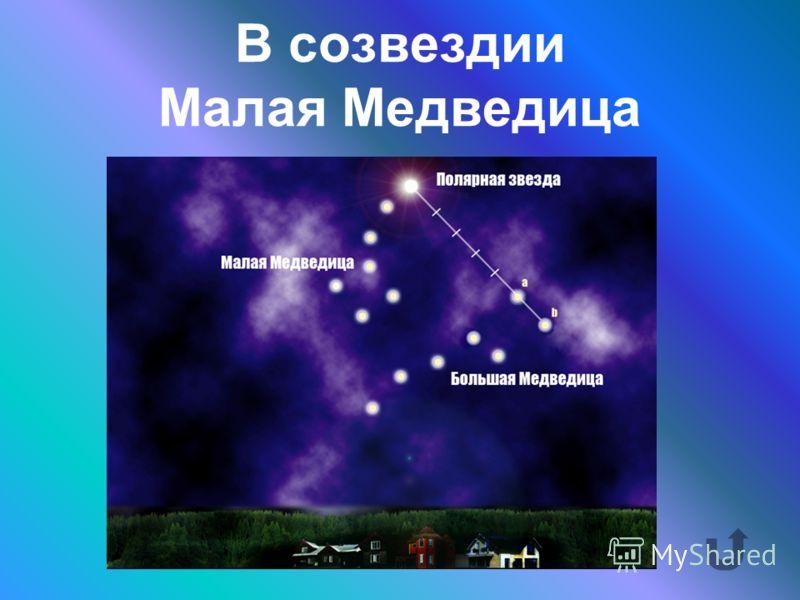В каком созвездии находится Полярная звезда?