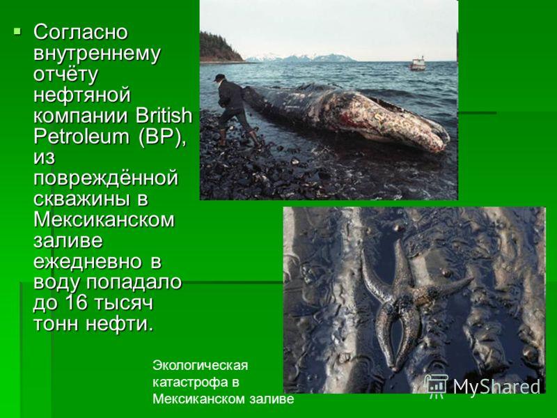 Согласно внутреннему отчёту нефтяной компании British Petroleum (BP), из повреждённой скважины в Мексиканском заливе ежедневно в воду попадало до 16 тысяч тонн нефти. Согласно внутреннему отчёту нефтяной компании British Petroleum (BP), из повреждённ