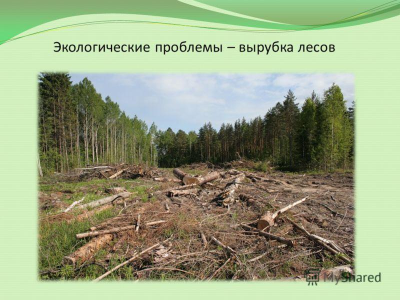 нам знакомы экологические проблемы россии