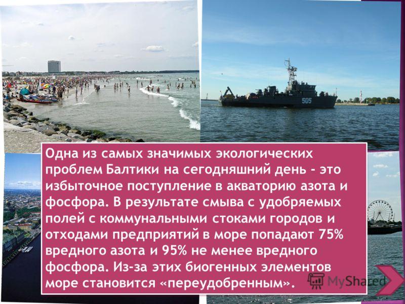 Одна из самых значимых экологических проблем Балтики на сегодняшний день - это избыточное поступление в акваторию азота и фосфора. В результате смыва с удобряемых полей с коммунальными стоками городов и отходами предприятий в море попадают 75% вредно