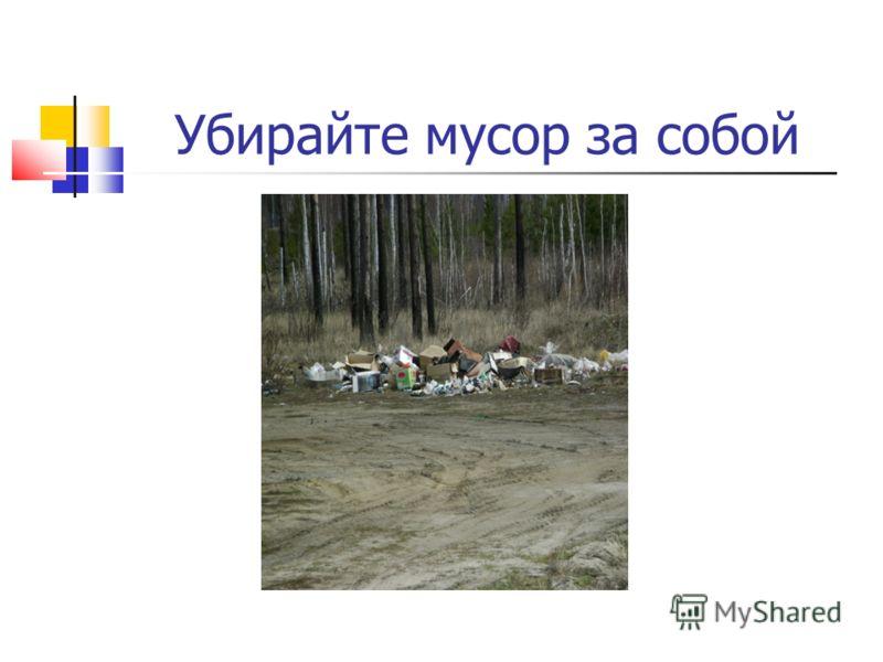 Убирайте мусор за собой