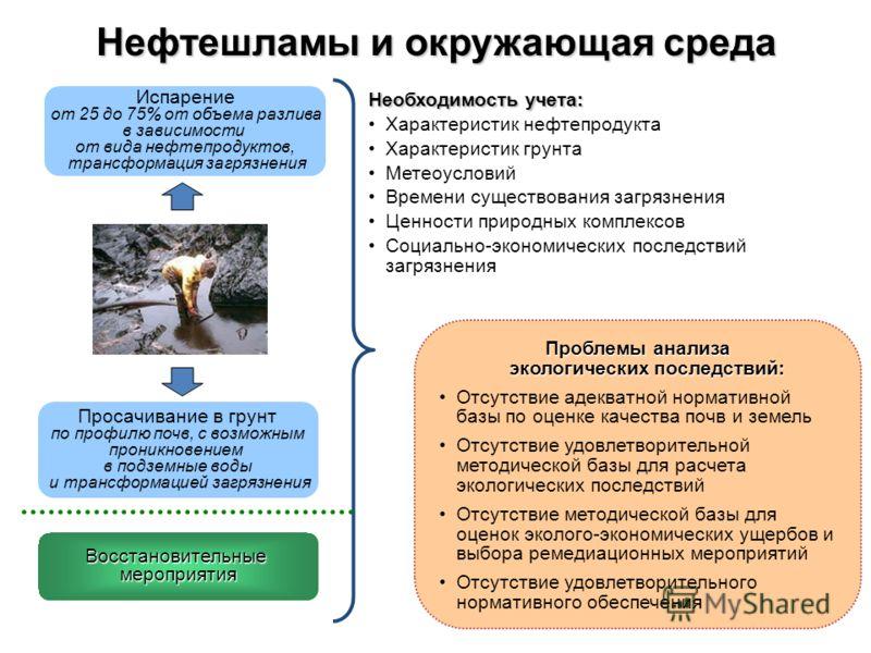 Проблемы анализа экологических последствий: Отсутствие адекватной нормативной базы по оценке качества почв и земель Отсутствие удовлетворительной методической базы для расчета экологических последствий Отсутствие методической базы для оценок эколого-