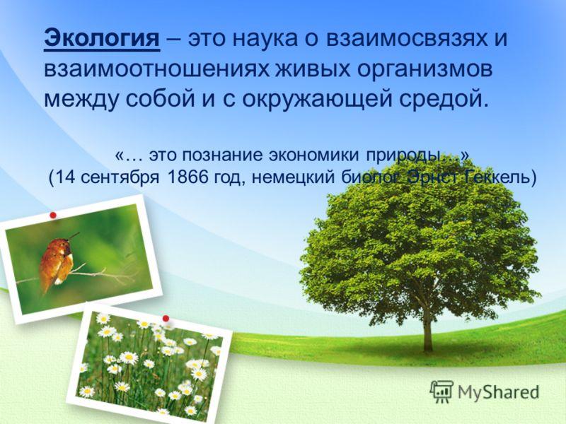 Экология – это наука о взаимосвязях и взаимоотношениях живых организмов между собой и с окружающей средой. «… это познание экономики природы…» (14 сентября 1866 год, немецкий биолог Эрнст Геккель)