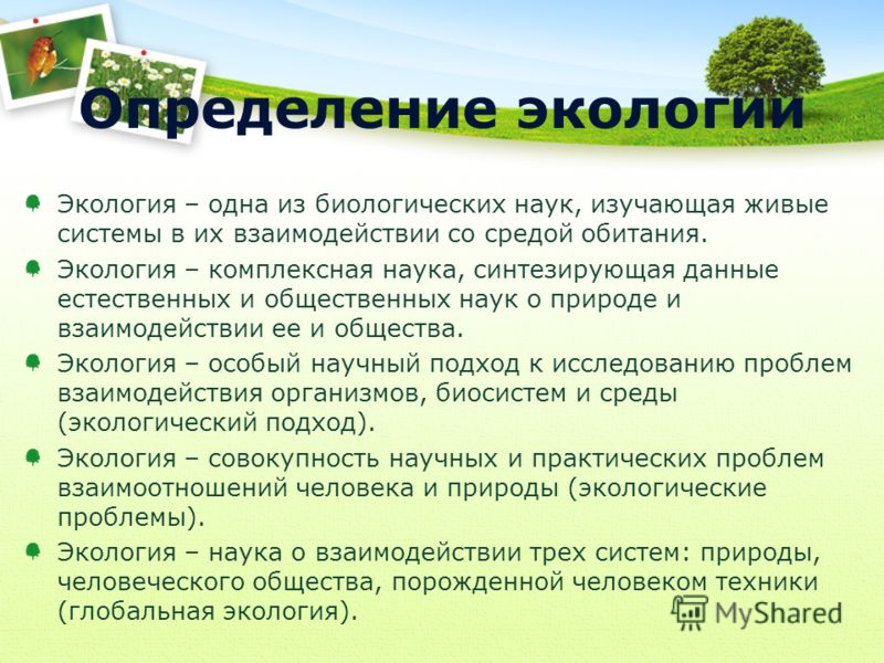 Определение экологии Экология – одна из биологических наук, изучающая живые системы в их взаимодействии со средой обитания. Экология – комплексная наука, синтезирующая данные естественных и общественных наук о природе и взаимодействии ее и общества.